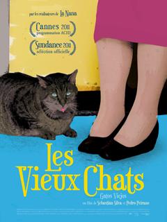 les vieux chats - Poster